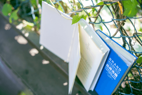 2020年深圳市自学考试政策