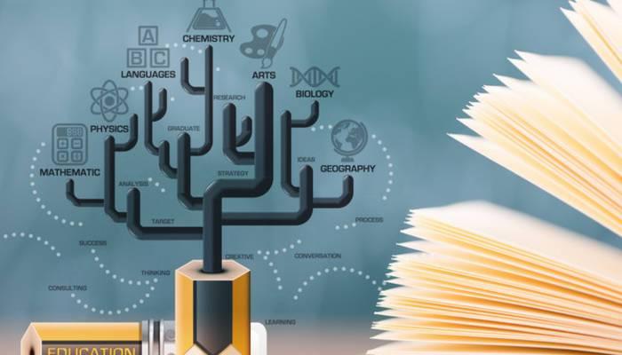 法国布雷斯特商学院MBA入学要求