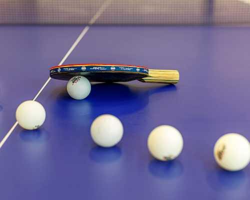 沈阳少儿网球培训哪家好